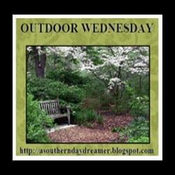 Linkup Outdoor Wednesday