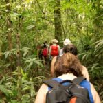 Panama rainforest hike
