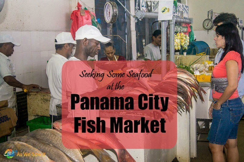Seeking some seafood at the panama city fish market for City fish market