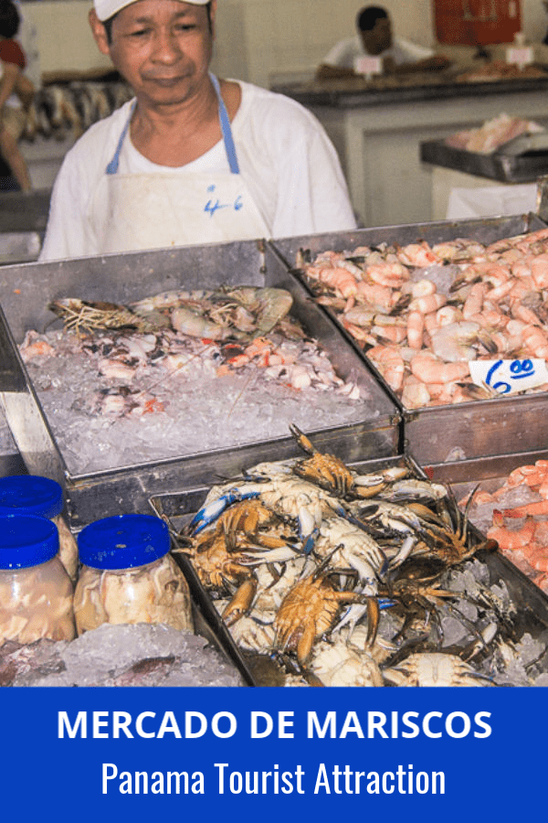 man stands behind a counter of shellfish on ice at the Panama City fish market. Text overlay says Mercado de Mariscos Panama Tourist Attraction