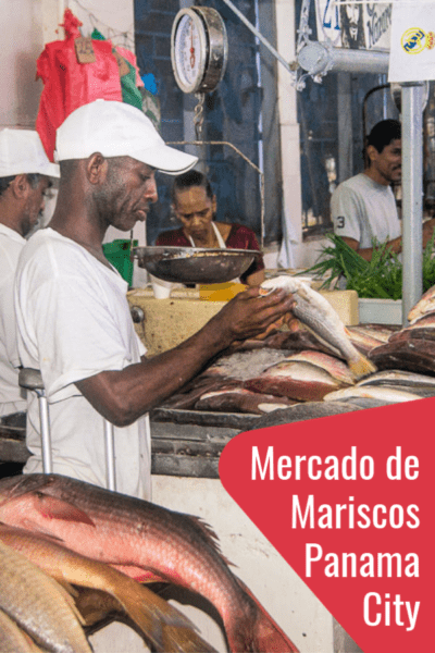 One of the most underrated things to do in Panama's capital is visiting Panama City's fish market, or Mercado de Mariscos, as the Panamanians call it. It's a top attraction in Panama City and a perfect way to connect with the locals. #Panama #travel #food #markets