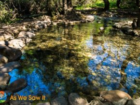 Wading pool at Tel Dan Nature Reserve Israel