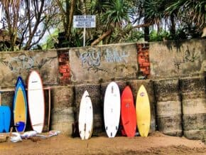 Surf Boards Canggu Bali
