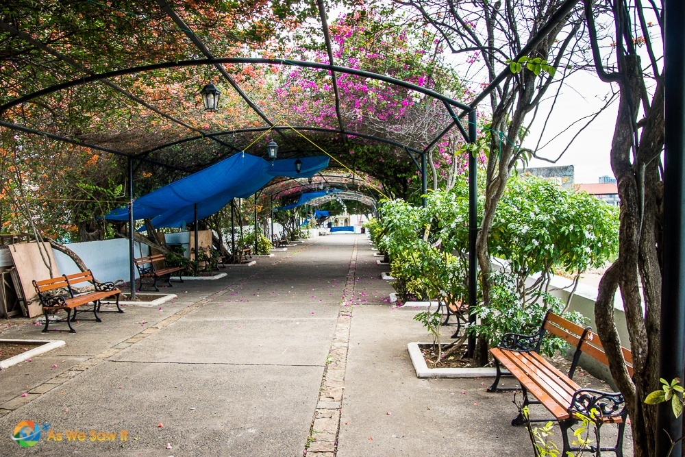Paseo las Bovedas is a trellised walkway covered in vines and bougainvillea