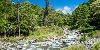 River in Puenta Pena Panama