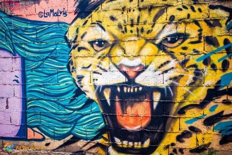 Colorful jaguar street art on a wall in Casco Viejo