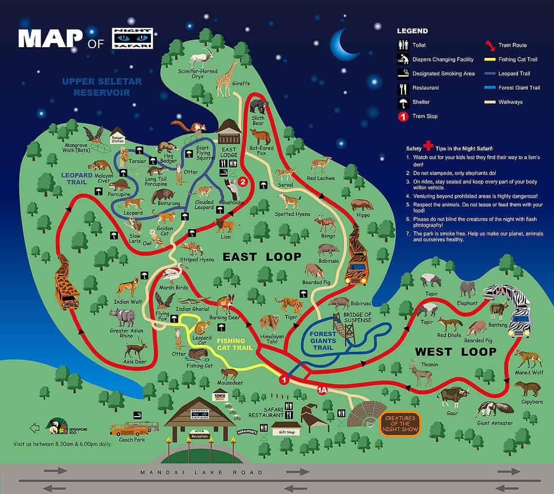 Map of Night Safari exhibits
