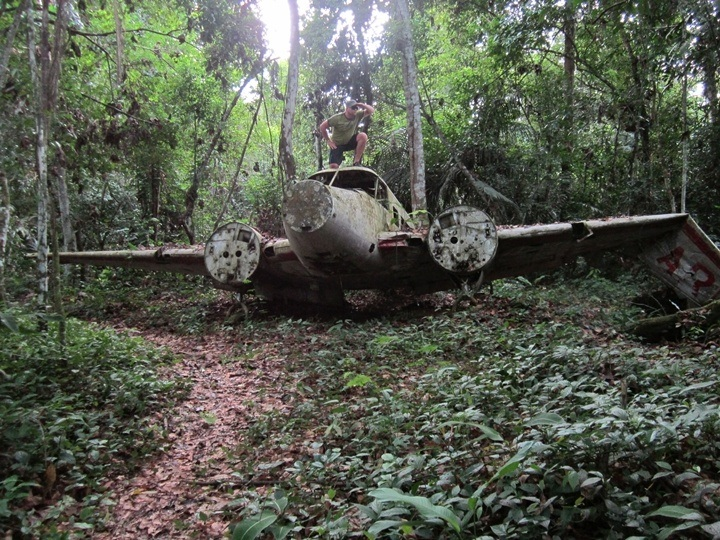 plane crash in the jungle essay com plane crash in the jungle essay