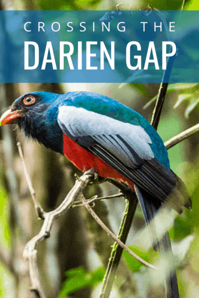 colorful bird text says crossing the darien gap