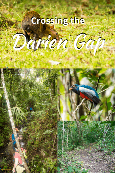 Collage from rain forest text says crossing the darien gap