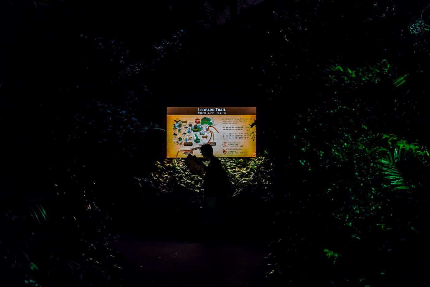 A man scans his map at Singapore Zoo night safari