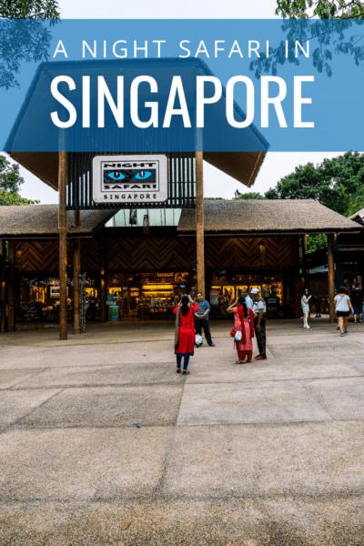 entry into singapore night safari text says a night safari in singapore