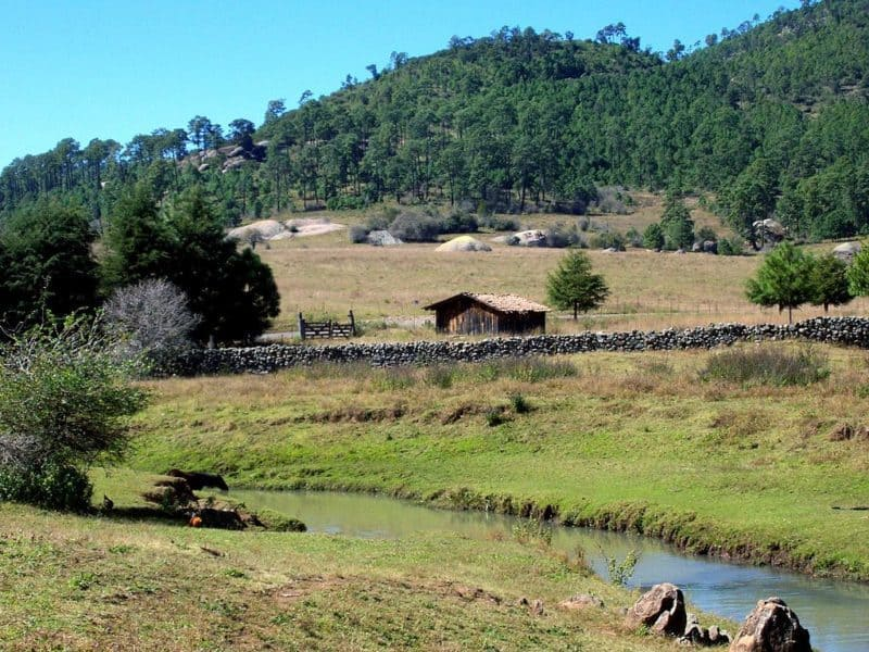 Small house in field with fence and stream in foreground and wooded hill in background.