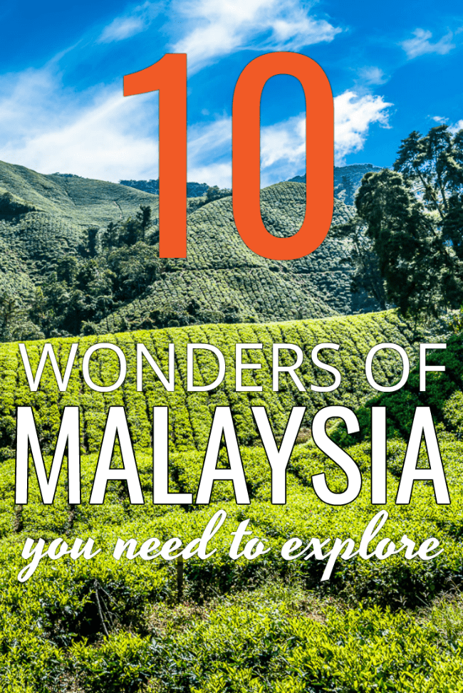 Rows of tea on plantation with text overlay 10 wonders of Malayasia you need to explore