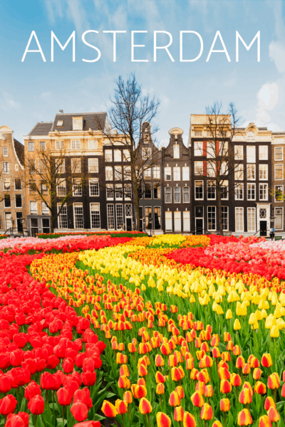 winding flower pattern leading to dutch buildings text says amsterdam