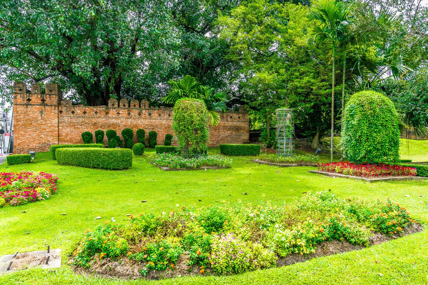 greenery chiang mai wall