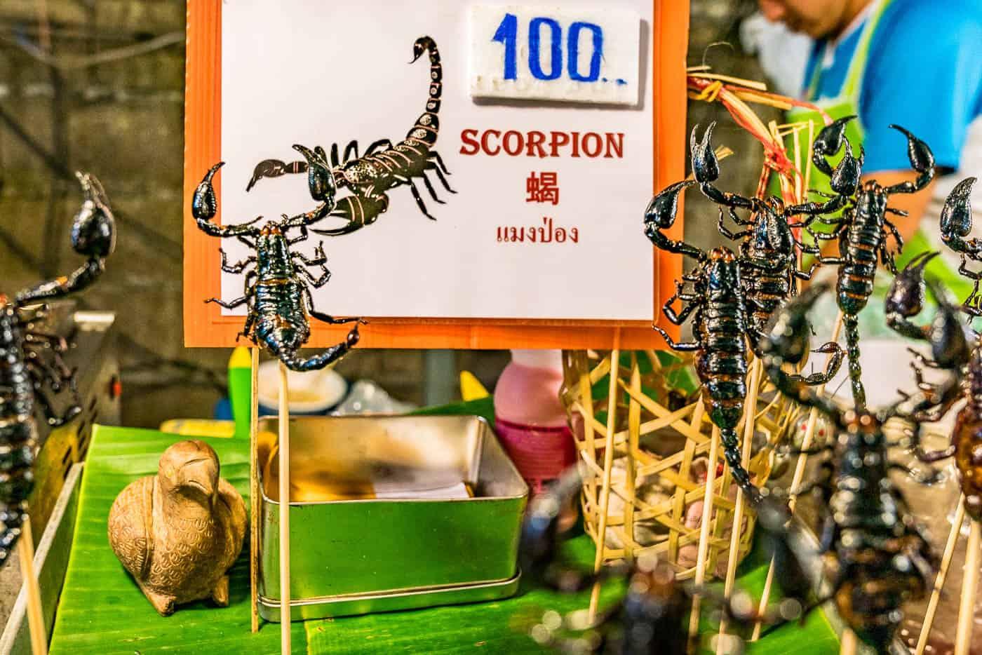 street food chiang mai scorpion