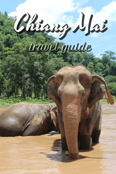 Two elelphants with text overlay that says chiang mai travel guide