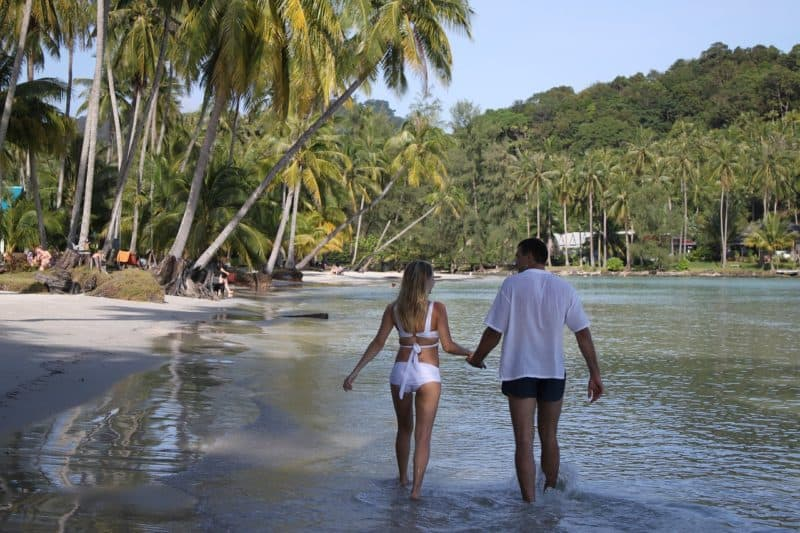 couple wading in water while holding hands. Palm trees in background