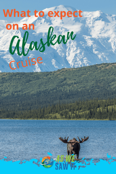 moose along a lake text says what to expect on an alaskan cruise