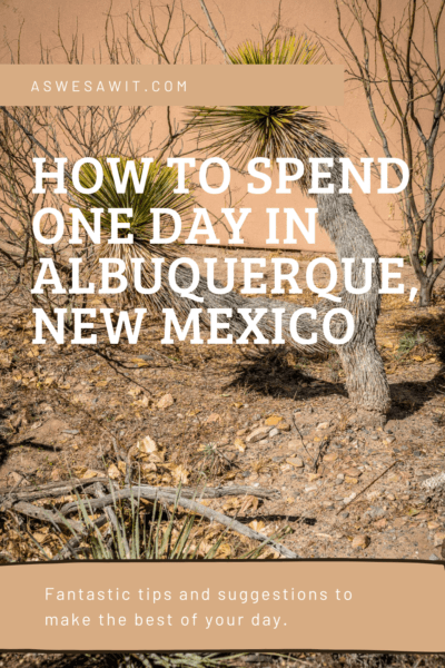 Catus and desert landscape text says how to spend 1 day in albuquerque new mexico