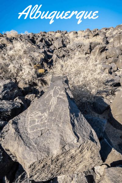 petroglyph of dinosaur text says albuquerque