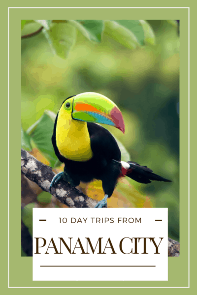 toucan text says 10 day trips from panama city