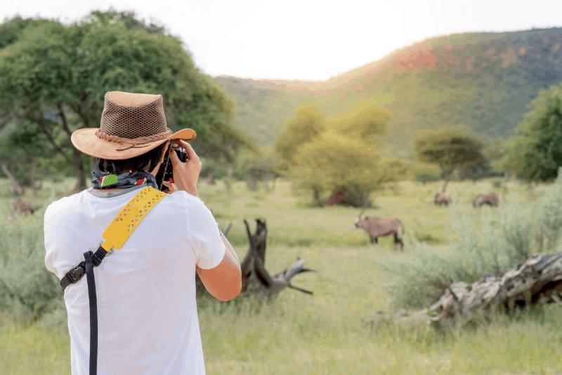 man photographing antelope on safari