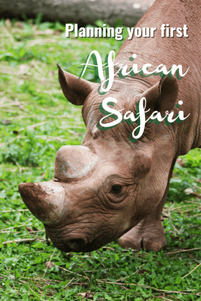 Rhino text says planning your first african safari