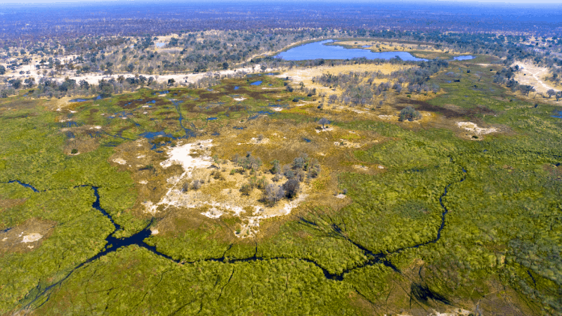 Ariel view of Okavanga Delta
