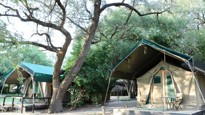 tents at a luxury safari camp