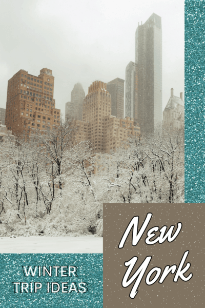 Central Park in winter. text overlay says new york winter trip ideas