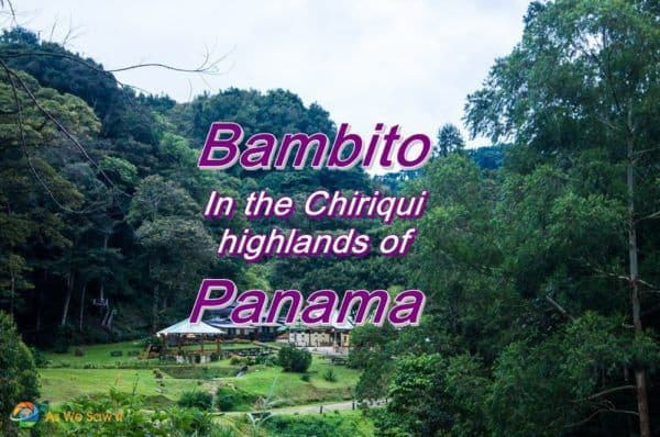 Bambito in the Chiriqui highlands of Panama