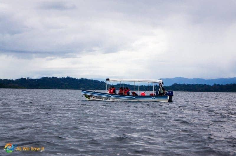 Dolphin watching in Bocas Del Toro