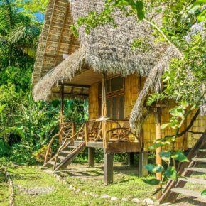 Cotococha Lodge on the Napo River