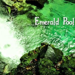 Green water of Emerald Pool, Dominica