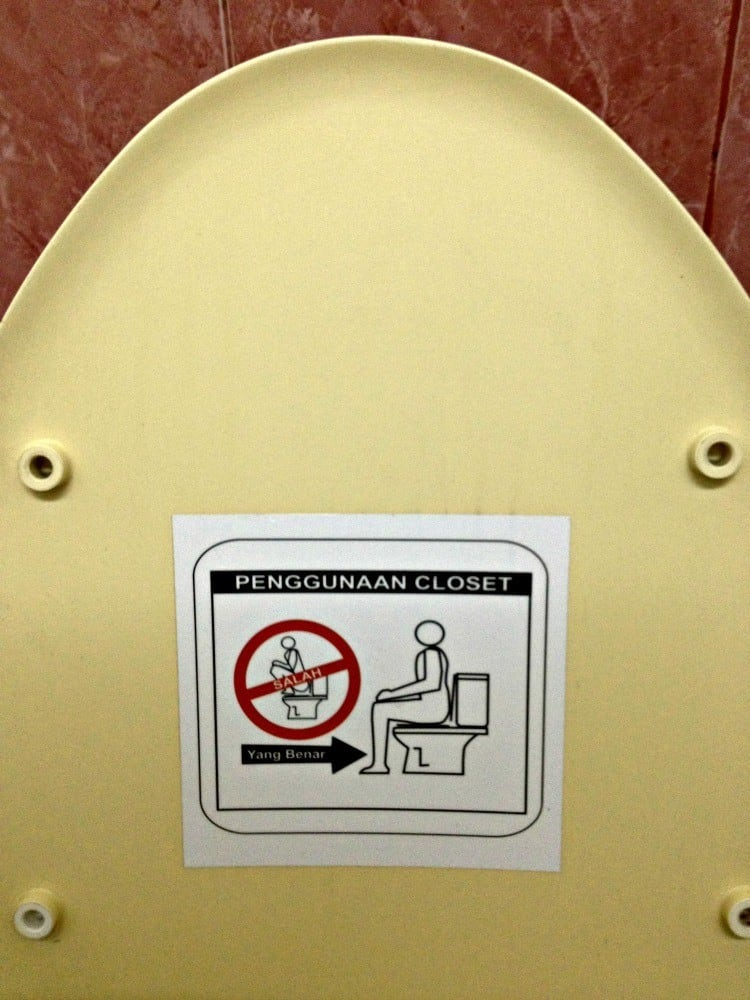 Instructions that toilets are for sitting not squatting.